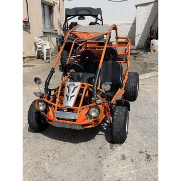 Used - XRX 300 BUGGY for Sale